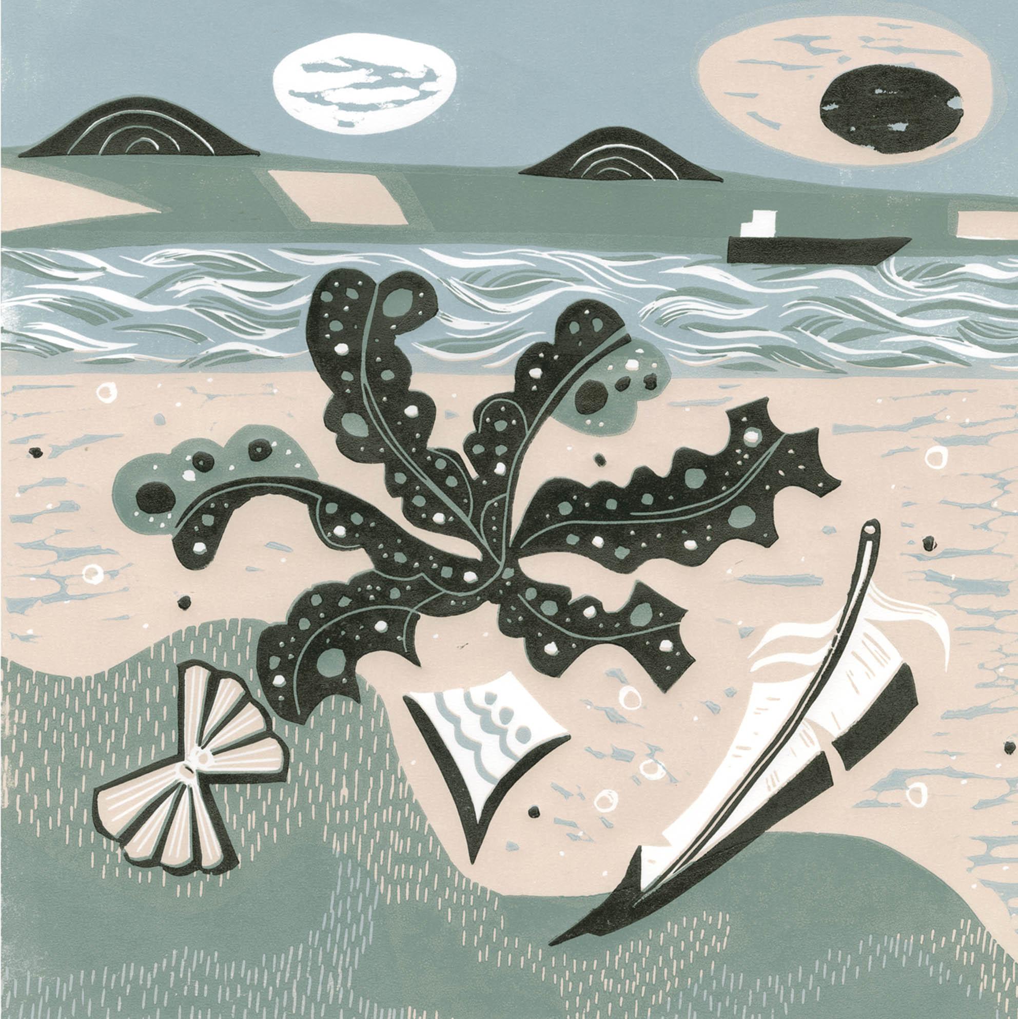 Low Tide Aberlady Bay
